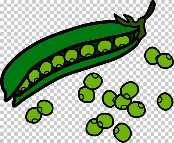 Sweet pea Vine , Pea s PNG clipart.