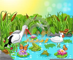 Free Garden Clipart Pond.