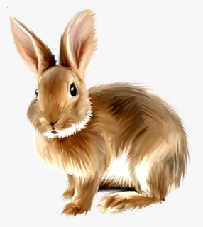 Free Easter Rabbit Clip Art with No Background.