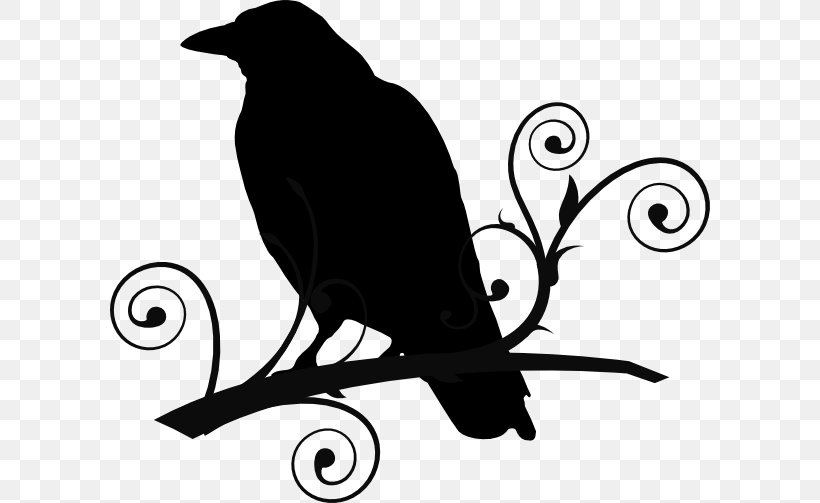 Common Raven The Raven Baltimore Ravens Clip Art, PNG.