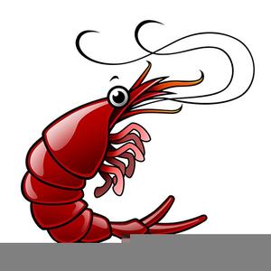 Free Shrimp Boil Clipart.