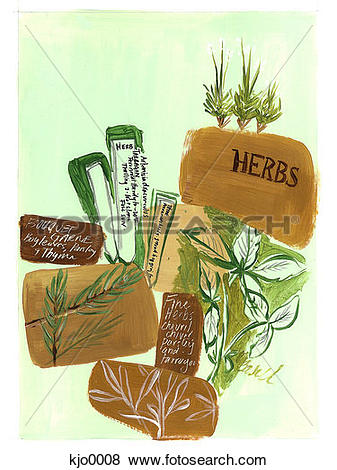 Herbs spices Illustrations and Clipart. 729 herbs spices royalty.