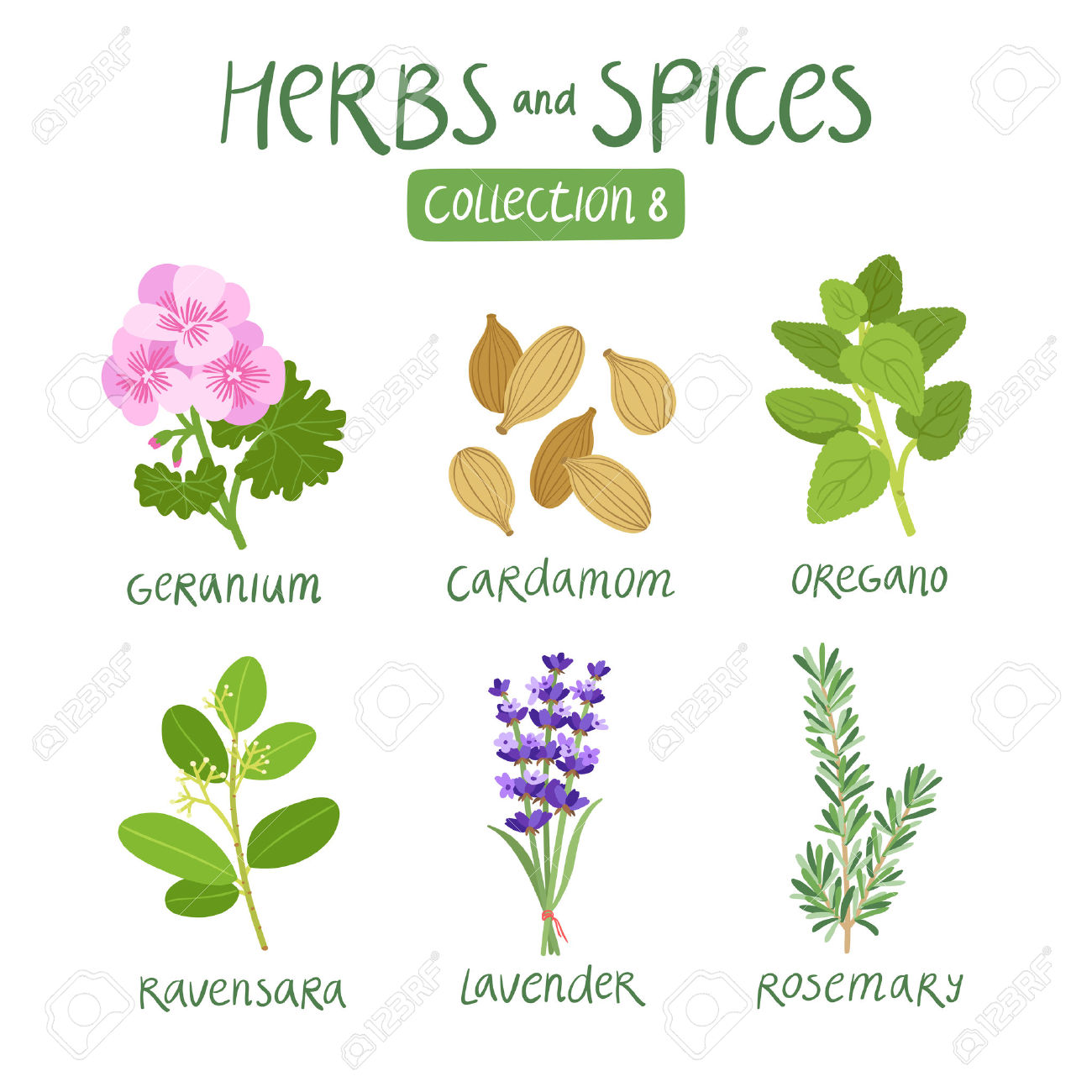 36,661 Spice Cliparts, Stock Vector And Royalty Free Spice.