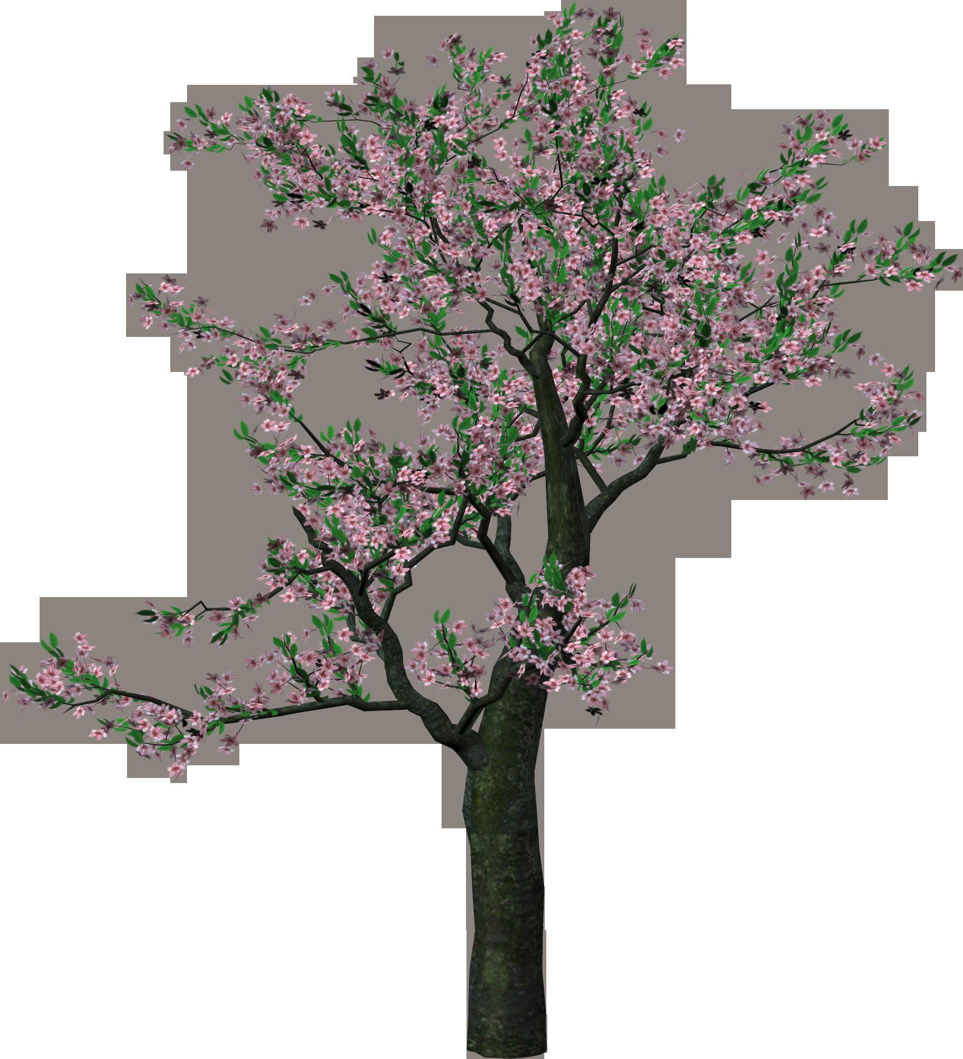 Showing post & media for Spring tree clip art cartoons.