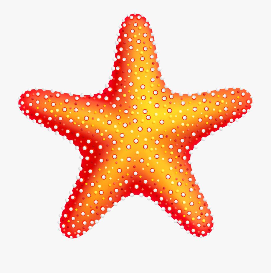 Star Fish Clipart.