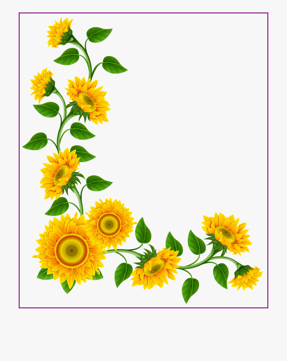 Stunning Sunflower Border Decoration Png Image This.