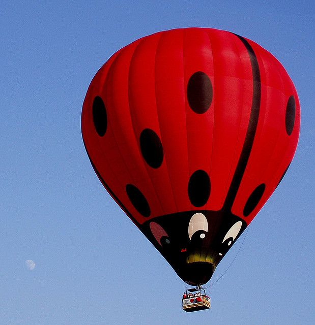 17 Best images about Up Up & Away on Pinterest.
