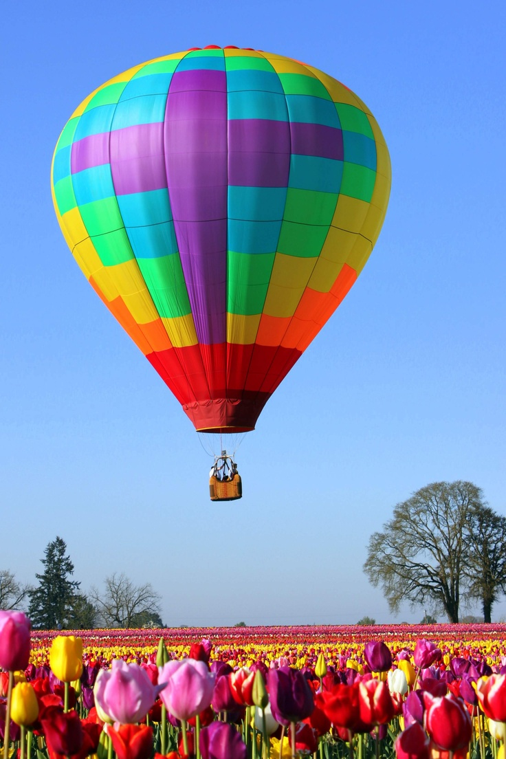 17 Best images about Hot Air Balloons on Pinterest.