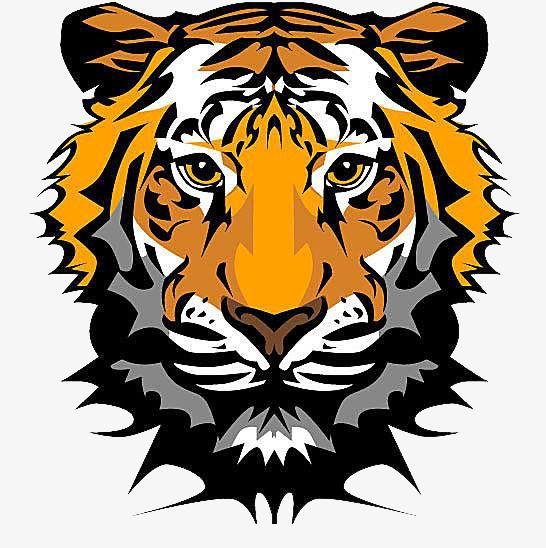 Face Paralyzed Tiger in 2019.