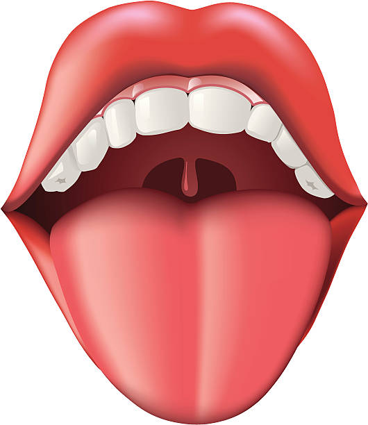 Mouth And Tongue Clipart.