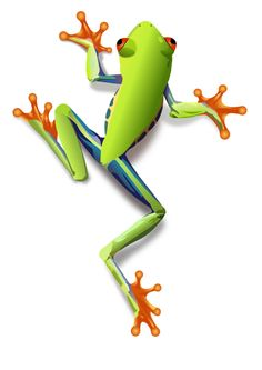 Free clipart tree frog with ice cream.