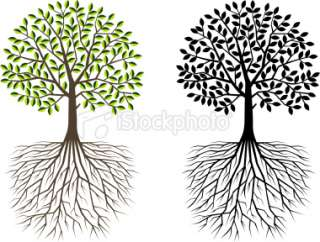 tree with deep roots clip art.