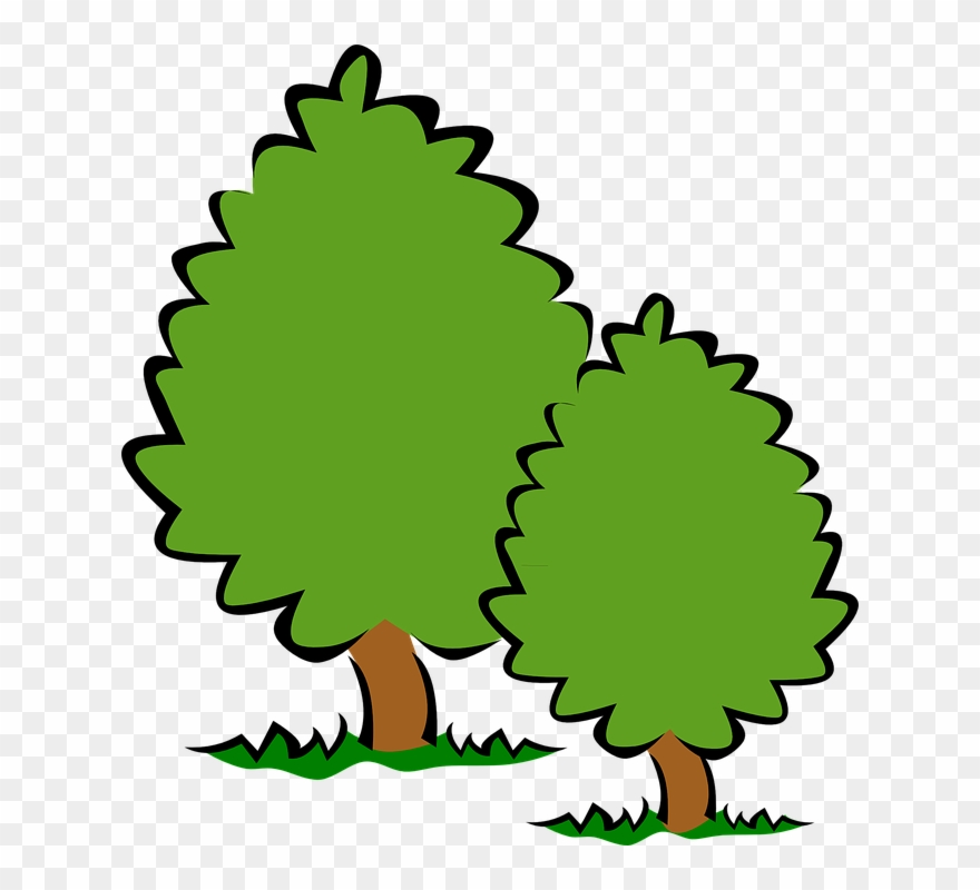 Trees Tree Clip Art Background Free Clipart Images.