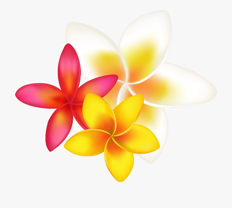 Tropical Flower Clipart Png Transparent Png , Png Download.