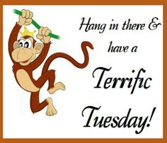 Free Silly Tuesday Cliparts, Download Free Clip Art, Free.
