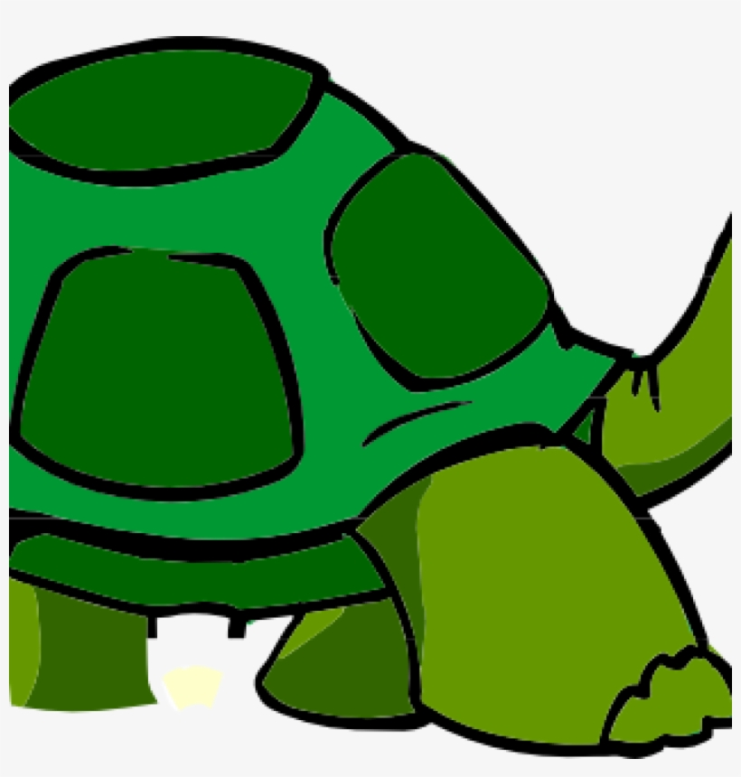 Free Turtle Clipart Turtle Clip Art Free Clipart Panda.
