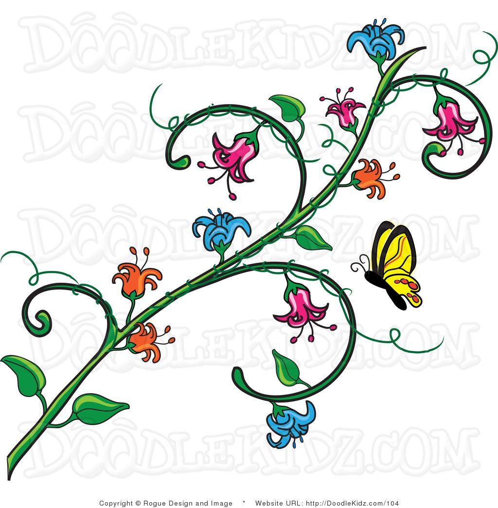 butterfly flower images.