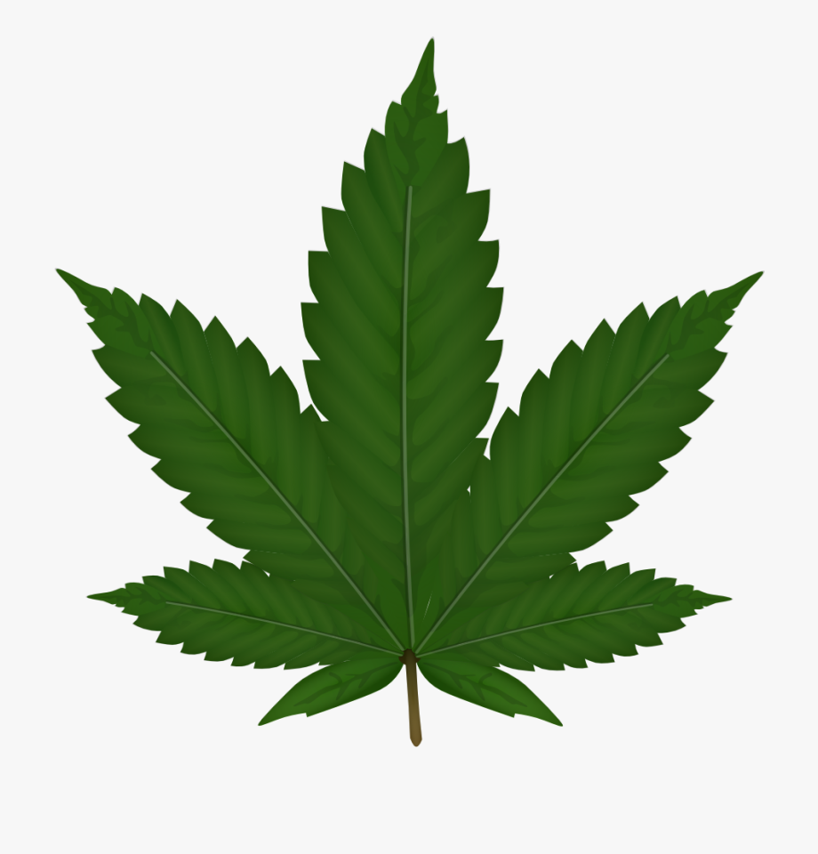 Weed Clipart , Transparent Cartoon, Free Cliparts.