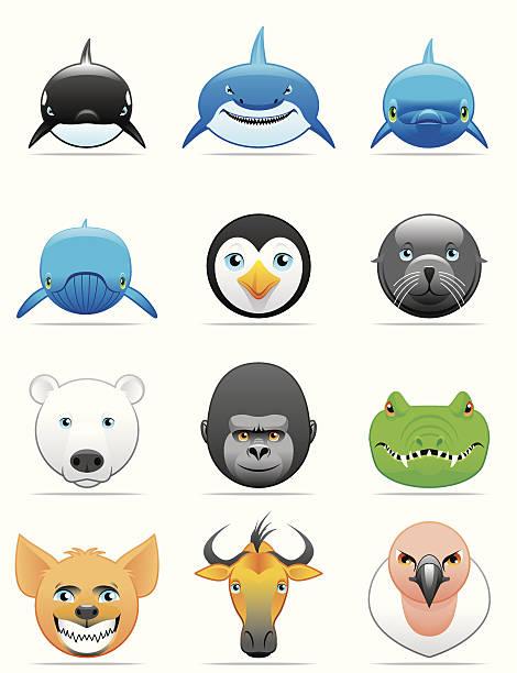 Whale Face Clip Art, Vector Images & Illustrations.