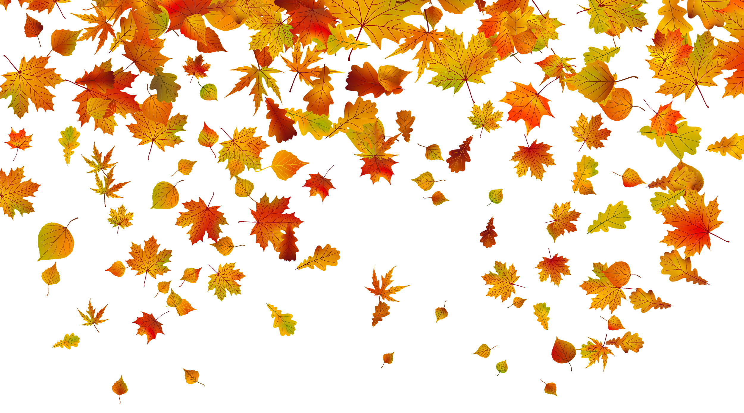 Fall Border Free Clipart With Transparent Background Png.