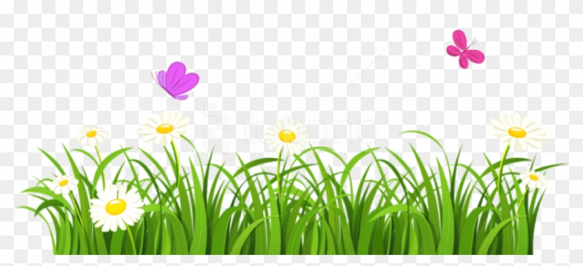 Free Png Download Grass And Butterflies Png Images.