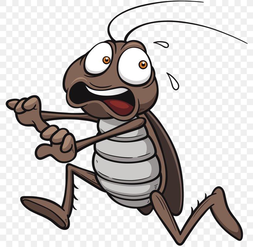 Cockroach Royalty.