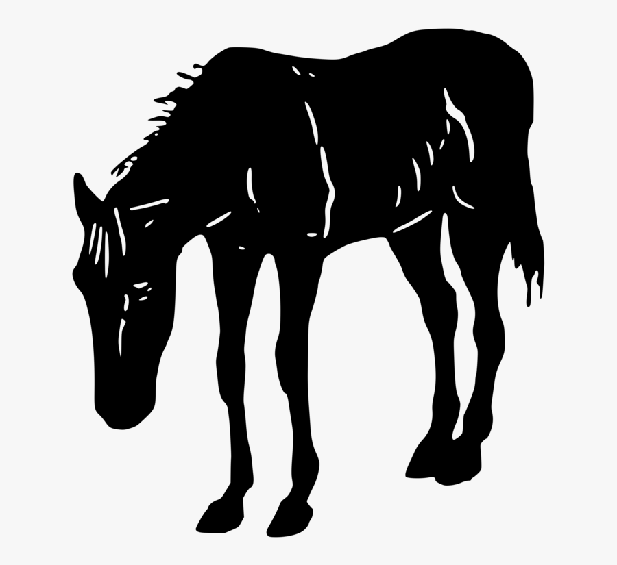 Transparent Colt Clipart.