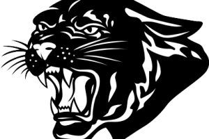 Free cougar clipart » Clipart Station.