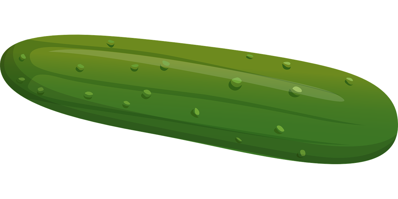 Free Cucumber Cliparts, Download Free Clip Art, Free Clip.