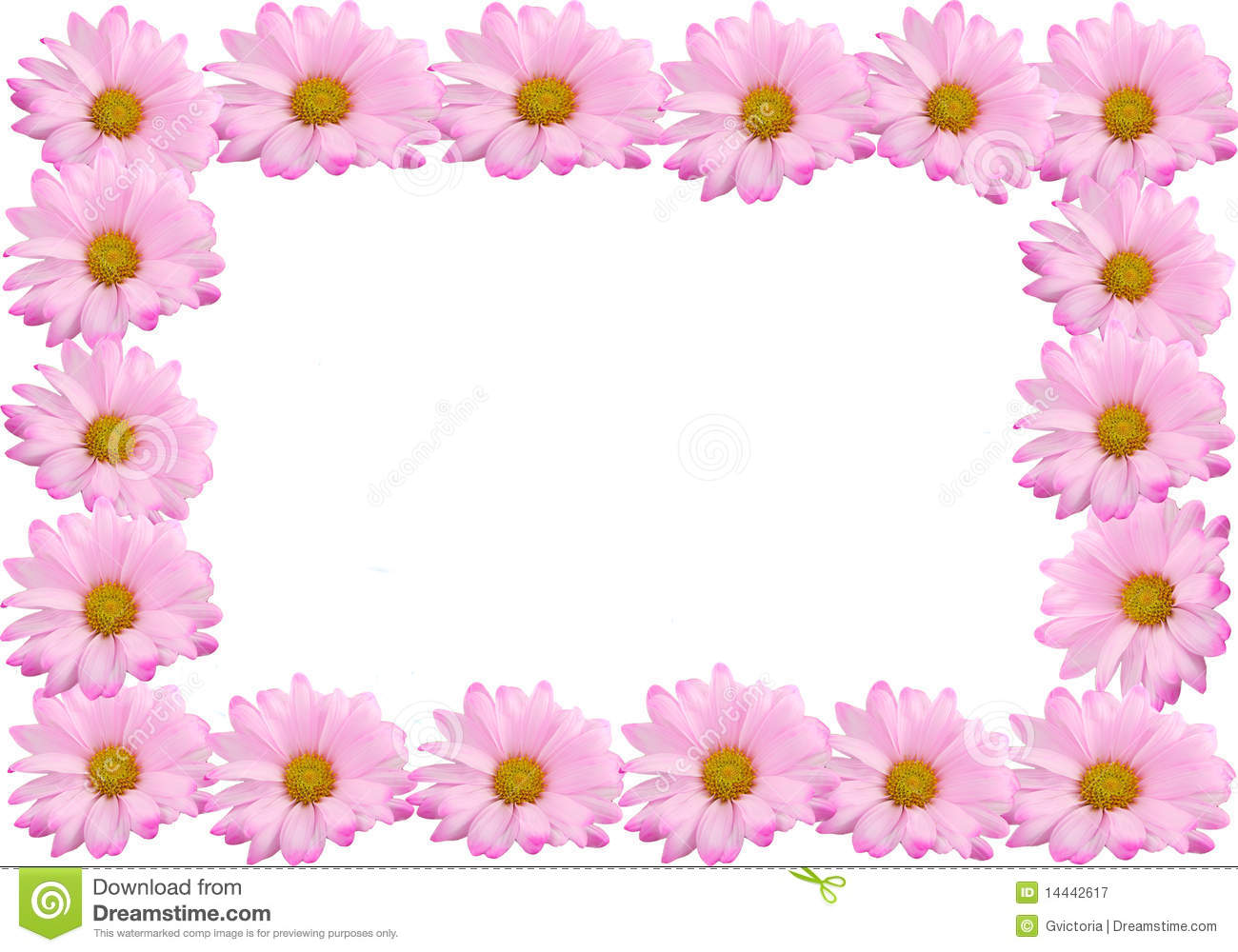 Pink Daisy Frame Or Border Royalty Free Stock Photography.