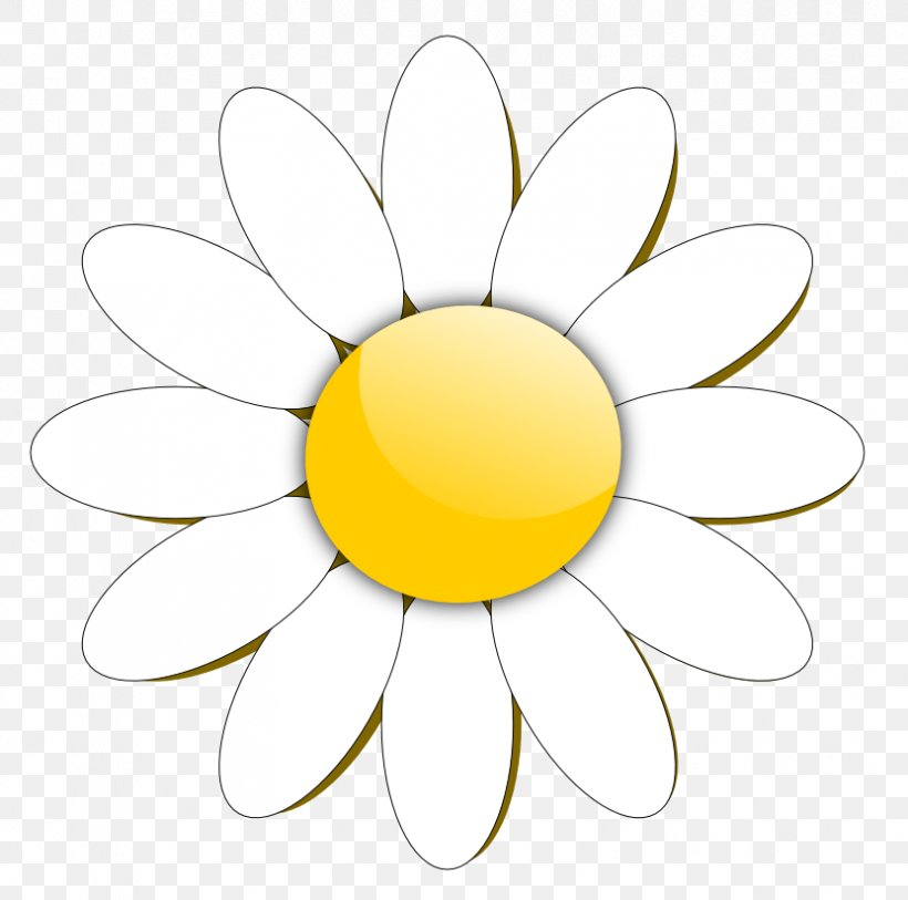 Free Content Common Daisy Clip Art, PNG, 831x824px, Free.
