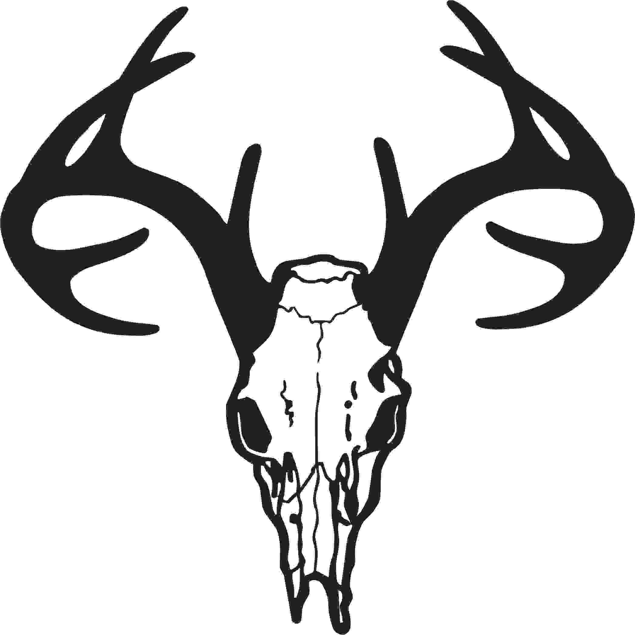 This is best Deer Skull Clip Art #14201 Deer Skull Drawing.