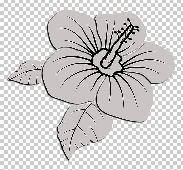 Delta Sigma Theta Drawing PNG, Clipart, Black And White, Cut Flowers.