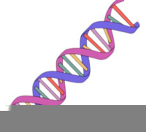 Free Animated Dna Clipart.
