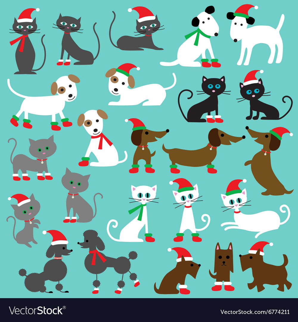 Christmas cats and dogs.