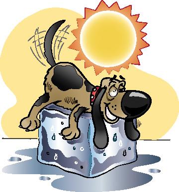 Dog Summer Cliparts Free Download Clip Art.