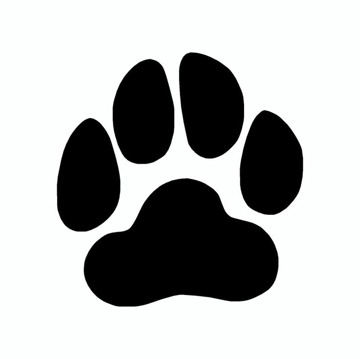 Picture of dog paw prints free clip arts sanyangfrp.