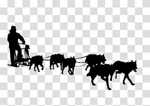 Sled Dog Racing transparent background PNG cliparts free.