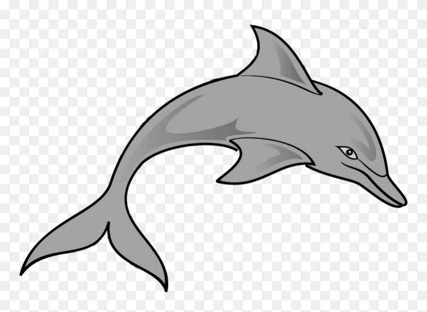 Free Dolphin Clipart Image.