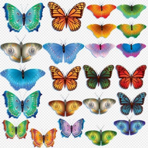 Butterflies Clipart PSD on transparent background free download.