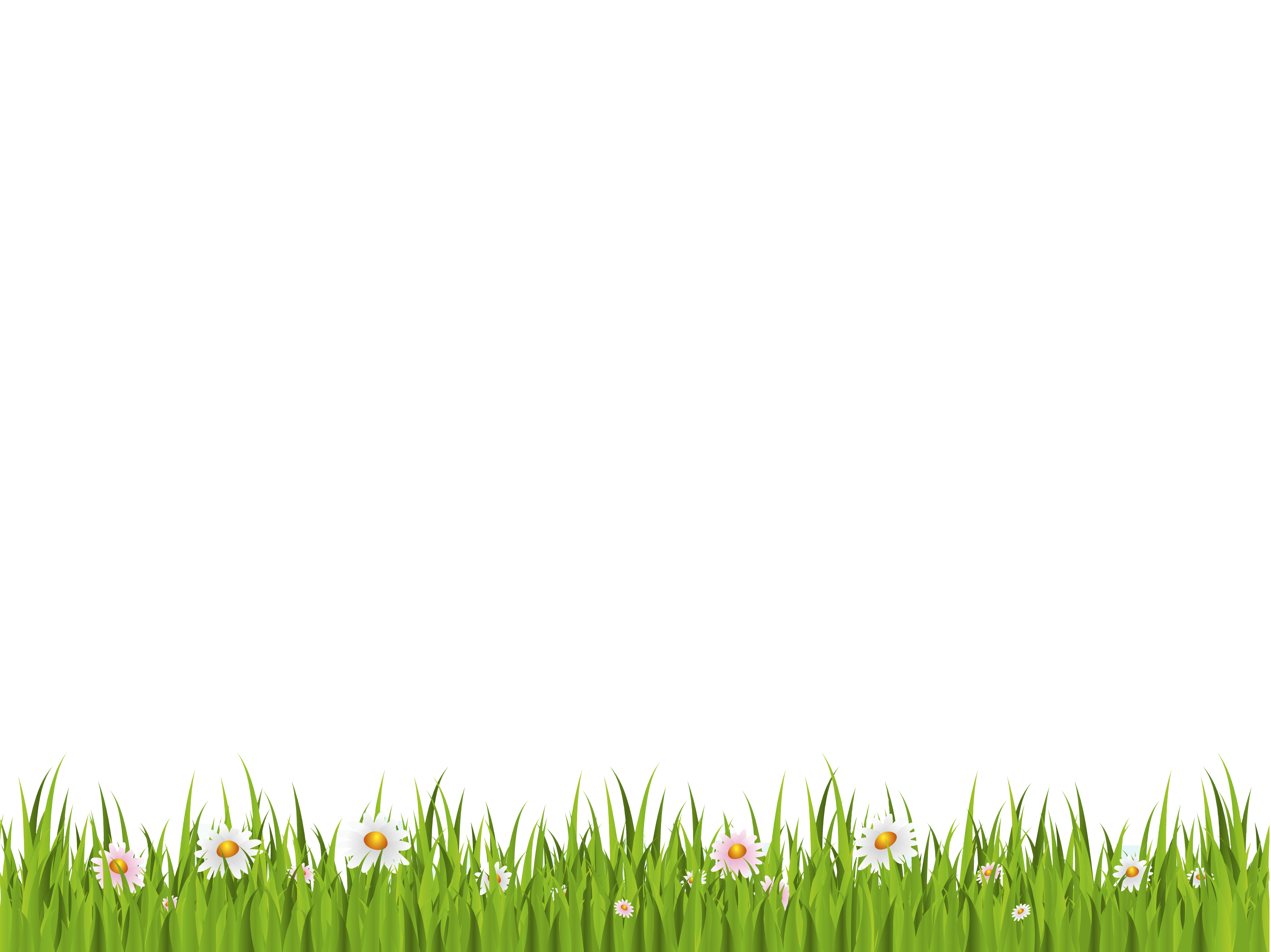 Grass Background Png (+).