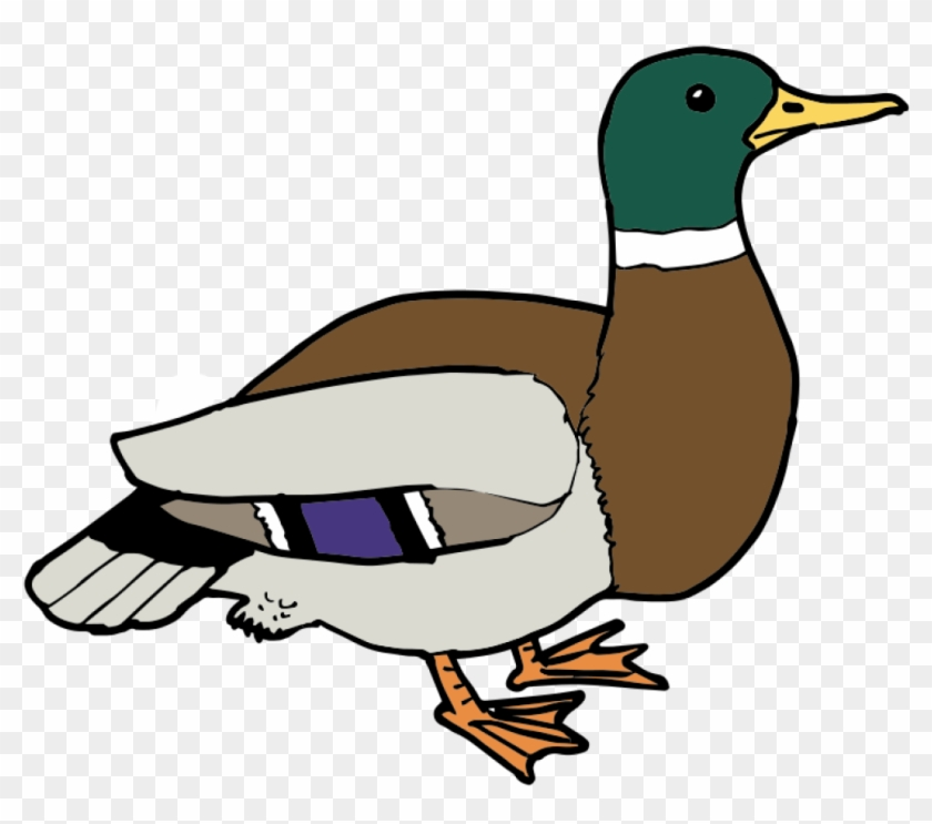 Free Duck Clipart Free Download Clip Art.