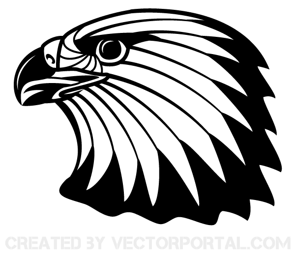 12 Eagle Feather Clip Art Vectors.