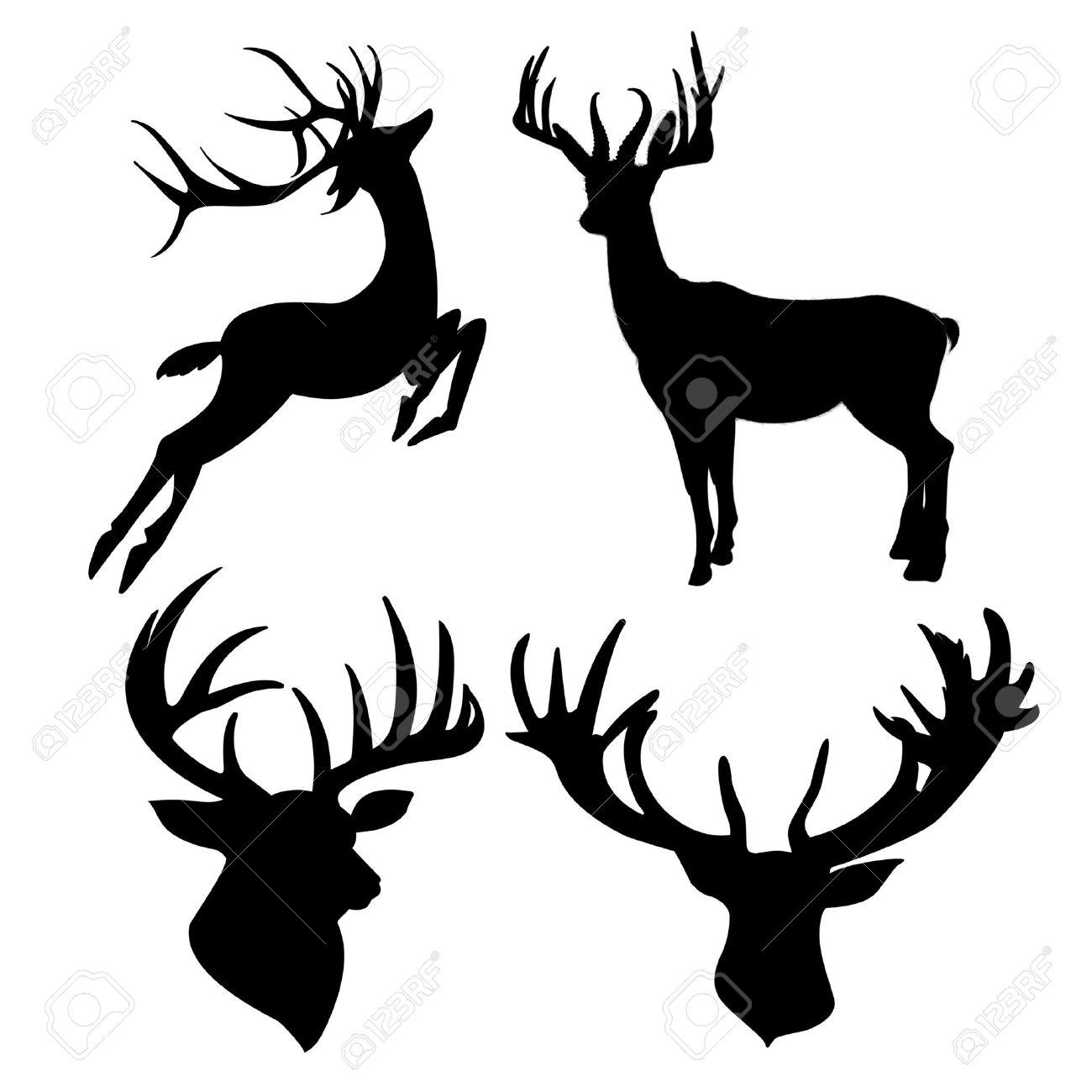 6,062 Elk Stock Vector Illustration And Royalty Free Elk Clipart.