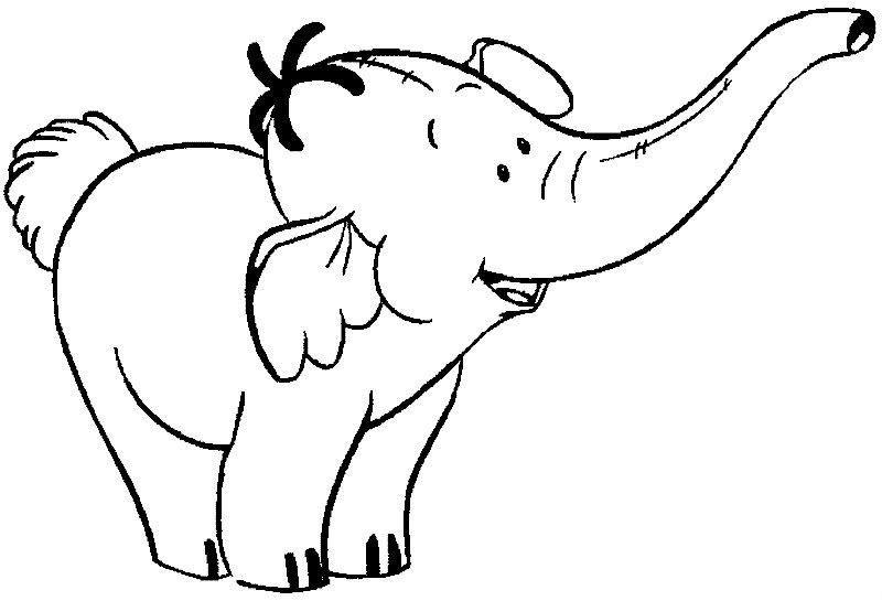 Elephants Pictures For Kids.