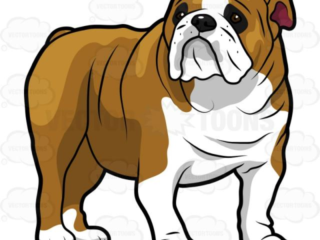 Bulldog clipart animated, Bulldog animated Transparent FREE.