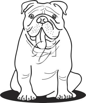 Royalty Free Clipart Image of a Bulldog.