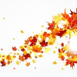 Excellent Bright Autumn Leaf Backgrounds Vector Set Draw.