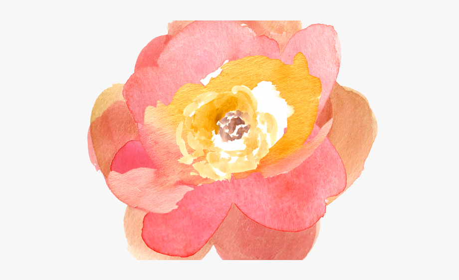 Peach Flower Clipart Free Fall.