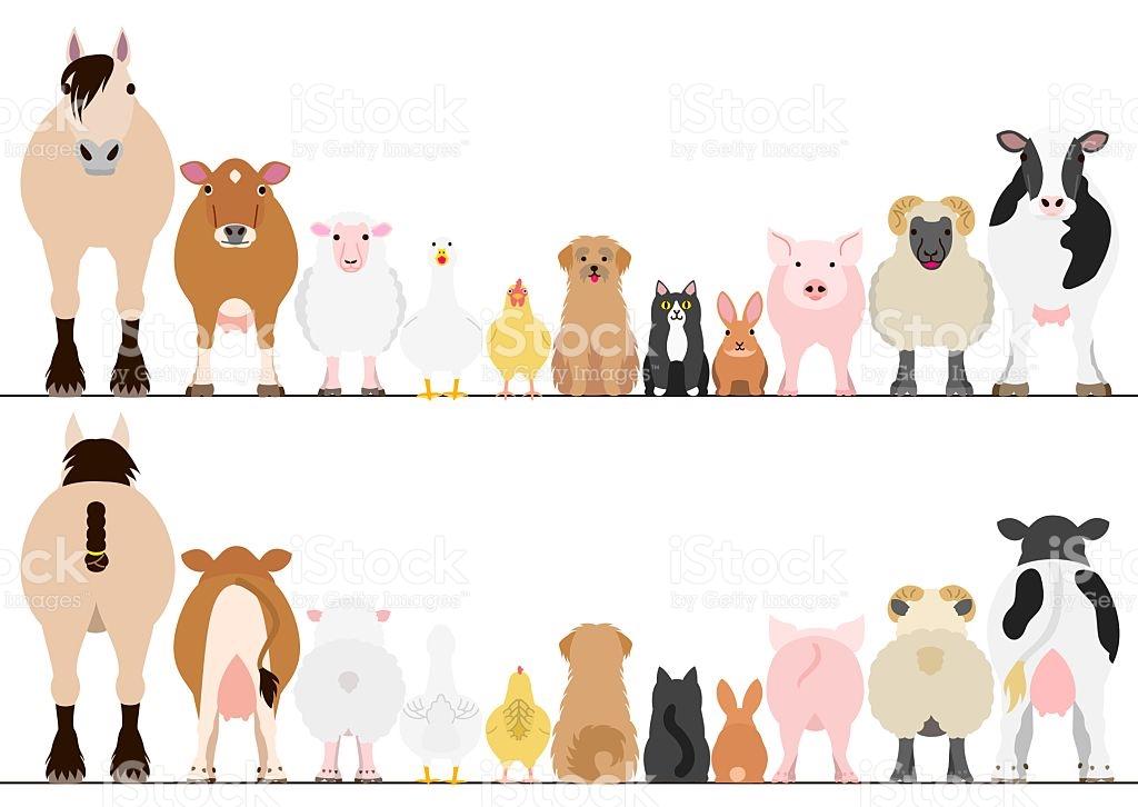 1239 Farm Animal free clipart.